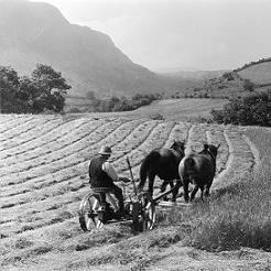 Traditional Farming Life