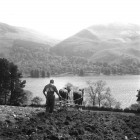 Farmer-Geordie-Lightfoot-with-his-horses-on-field-above-Loweswater