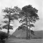 Loweswater-area2